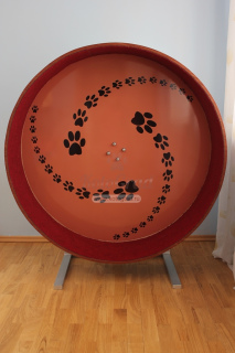 Photo №1. Wheel for cats Track should appeal not only to the villagers, but also to their in the city of Москва. Price - 300$. Announcement № 998