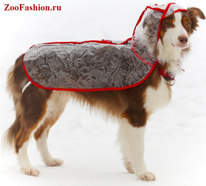 Photo №1. Clothing for dogs of all breeds in the city of Moscow. Price - 4$. Announcement № 3779