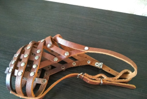 Photo №1. Leather muzzle for dogs. On large breed. in the city of Kharkov. Price - 11$. Announcement № 1115